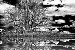 Peegeldus foto Huko Lumi 100.- 42x41,49cm