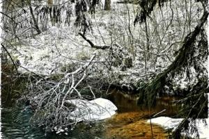 Trikoloor talvisel piusal Huko Lumi foto 100.- 42x29,85