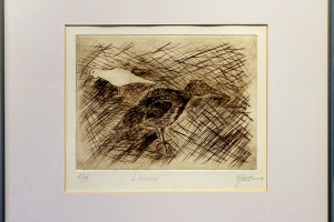 "Jana Schütz ""Linnud"" 36,5 x 33,5 cm, hind 150.-"