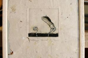 """""""Vahtrapuu"""" (kuivnõel) 2004. 23 x 26 cm"""
